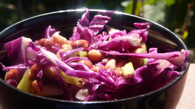 Red Cabbage and Mixed  Bean Salad